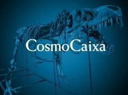 CosmoCaixa logo